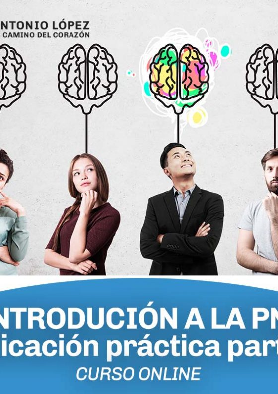 intro-pnl2